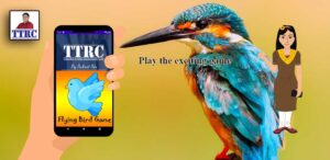Android 2D Game Development (Live One-One Class): Flying Bird Game Creation from Scratch
